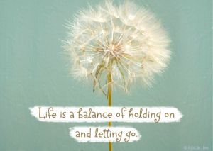"<a target=""_self"" href=""http://www.bluemountain.com/postcards/balance-of-life-quote/card-3419068"">Balance of Life</a>"