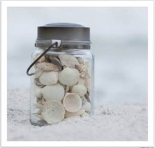 sq jar of shells 6.27