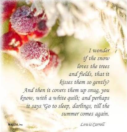 A Winter Poem
