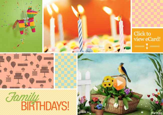 MOOD BOARD: Family Birthdays! (7.18)