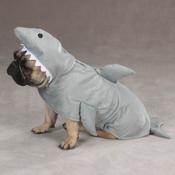Large Dog Shark Costume Land-shark-costume-for-dogs