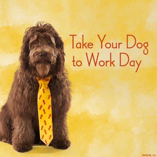 06172014_dog_work_BLOG_BMA