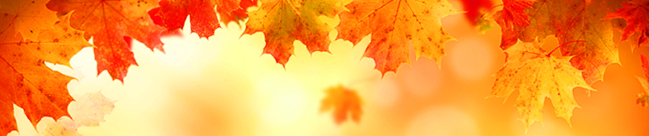 Autumn_cover_2014_BLG.jpg